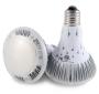 Λαμπτήρες LED GLACIAL BR30 9W E27
